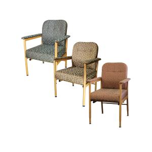R & R Healthcare Equipment Murray Bridge Chair Low Back Dot