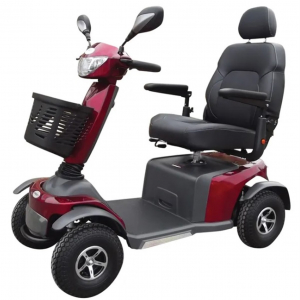 Pioneer 12 Scooter